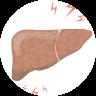肝臓の痛み